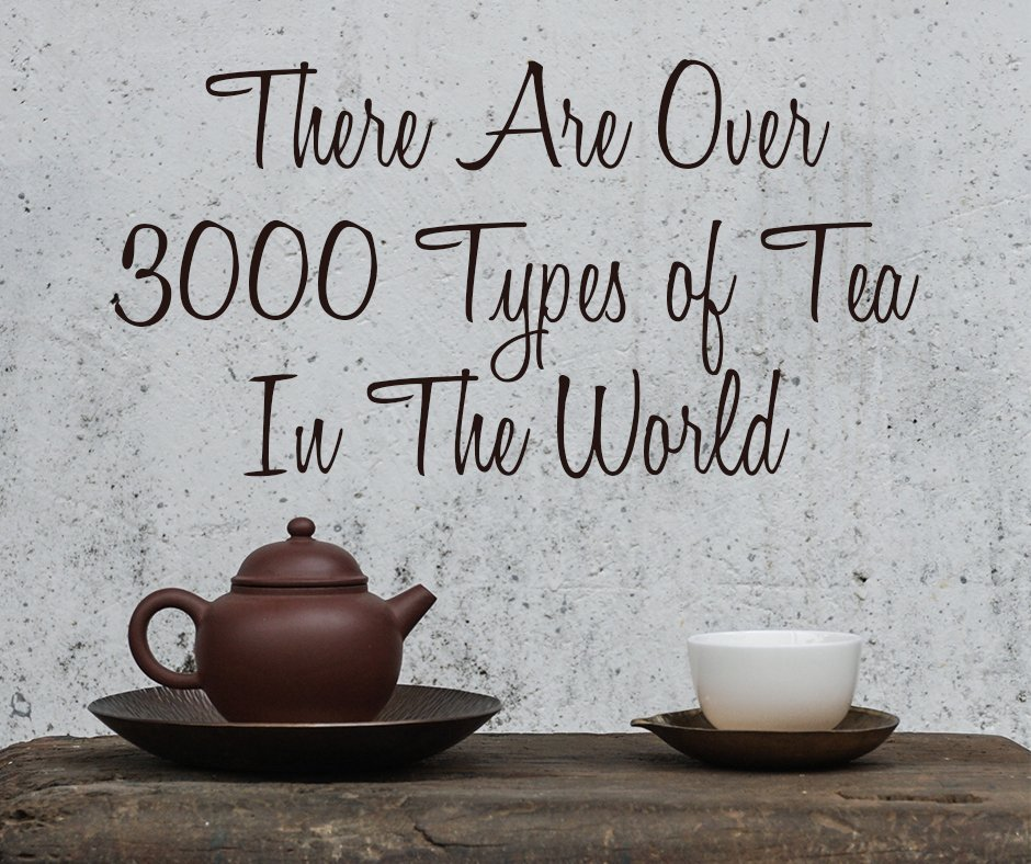 1 There Are Over 3000 Types of Tea In The World