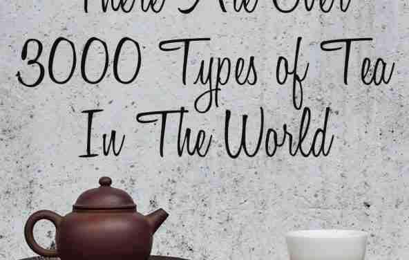 Fascinating Amount of Tea Varieties-3000 Plus